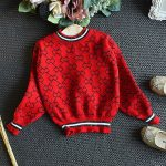 top red two piece pleated skirt and sweater outfit
